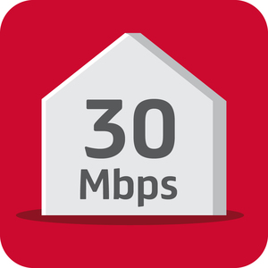 Superfast 30 Mbps (300 GB)